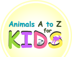 Animals A to Z for Kids logo